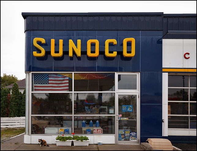 Cat And American Flag At A Sunoco Gas Station Photograph