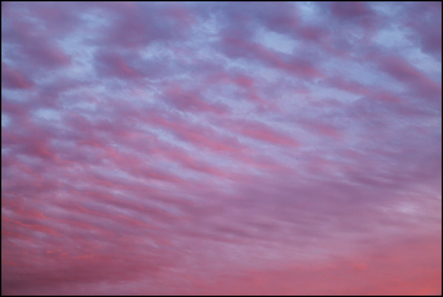 Abstract photograph of a red and blue sky with bands of purple clouds at sunset on a November evening in rural Allen County, Indiana.