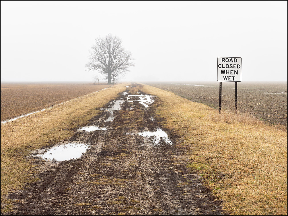 A muddy dirt road runs past a tree and disappears into the fog on a rainy morning in rural Paulding County, Ohio. A sign on Township Road 152 says Road Closed When Wet.