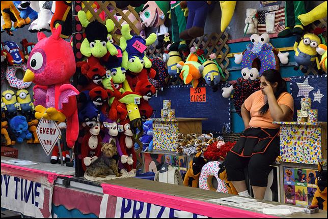 A bored carny and a small dog at the ball-toss game during the 2016 Churubusco Turtle Days carnival in the small town of Churubusco, Indiana. The dog sits on the counter next to some plush toy prizes.