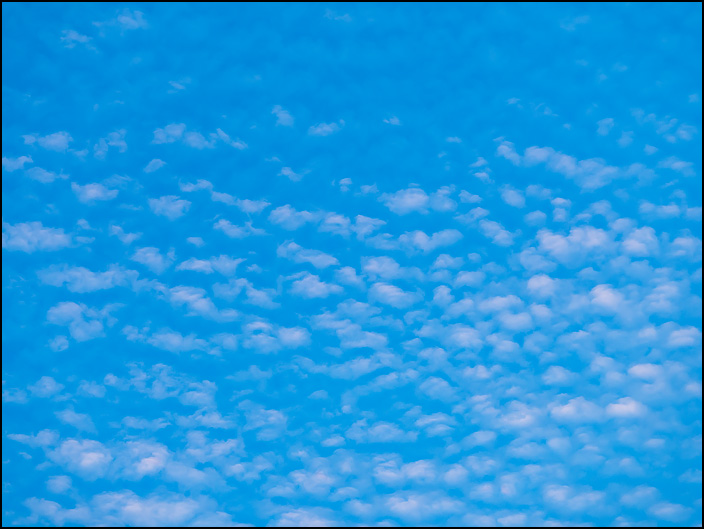 An abstract photograph of a blue sky filled with small round clouds that look like dots filling the morning sky.