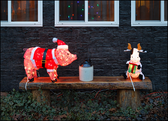 A lighted plastic pig wearing a Santa Claus costume stands on a bench in front of a house on Tyrone Road in Fort Wayne, Indiana.