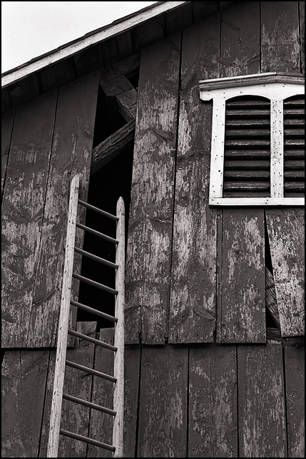 A ladder to a hole in the side of an old barn.