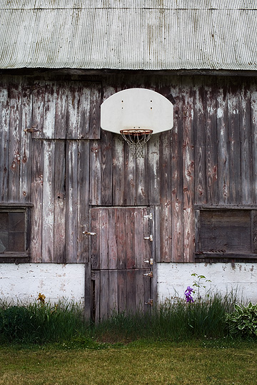 A basketball hoop hanging over the door of an old weathered barn in rural Pulaski County, Indiana. Flowers grow by the barn door.