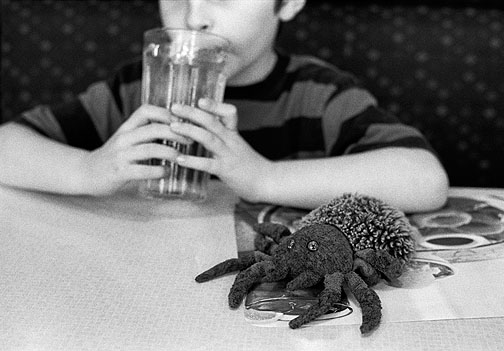 My son with a Beanie Baby called Hairy the Spider at a restaurant.