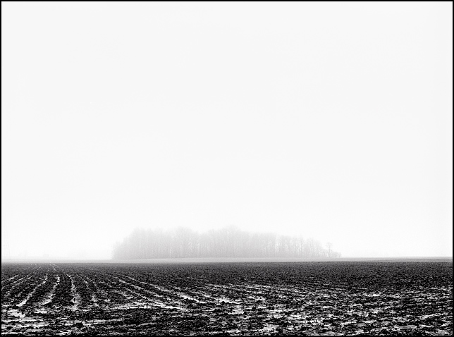 Thick fog and rain obscures a stand of trees on the other side of a plowed field in an Indiana landscape.