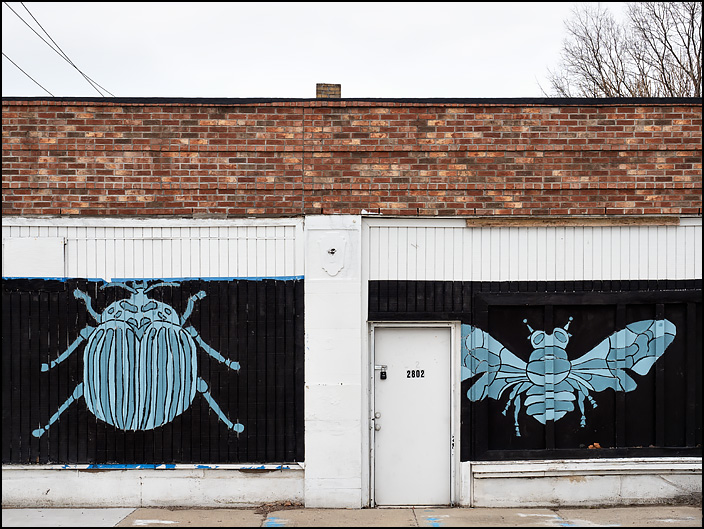 An old boarded-up brick storefront on Central Avenue in Indianapolis with large blue insects painted on the wood covering the windows.