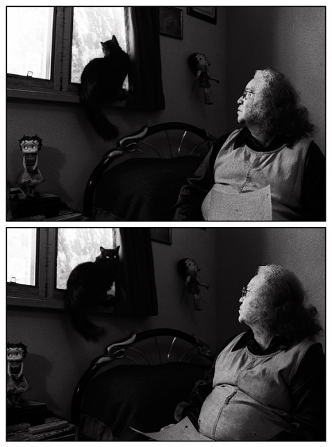An elderly woman and her black cat look at each other in her bedroom. The cat sits in the window above her.