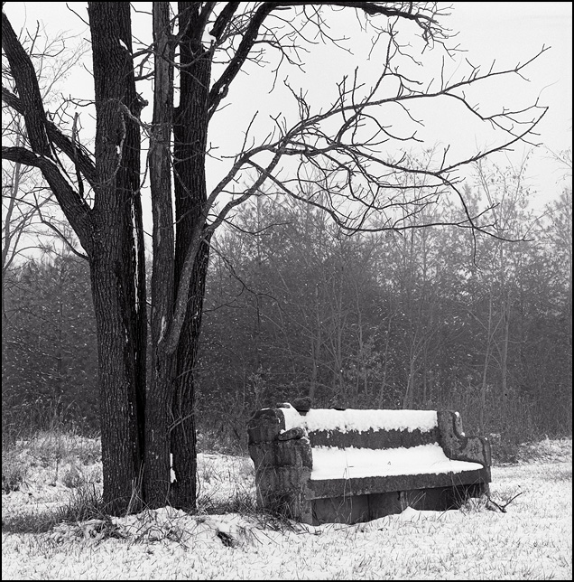 A big concrete bench that looks like a church pew sits under a tree along a rural road in Indiana during a heavy snowstorm.