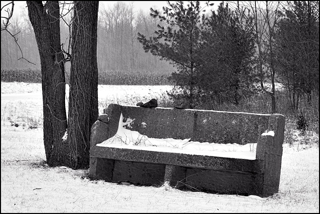 Black and white photograph of a big concrete bench that looks like a church pew sitting near a cornfield along the side of Dalman Road in rural Allen County, Indiana.