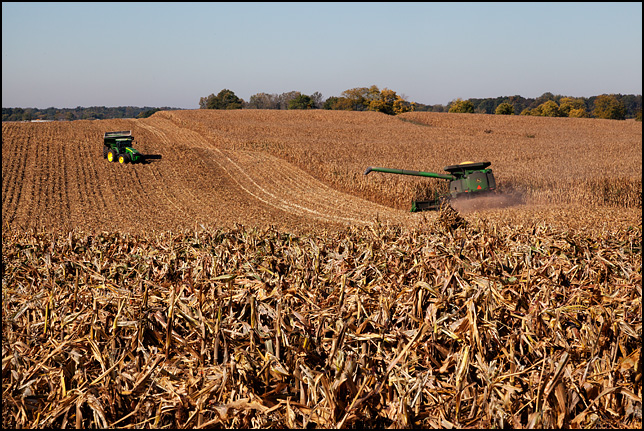 A John Deere combine moving across a rolling field of corn during the harvest in rural Whitley County, Indiana.