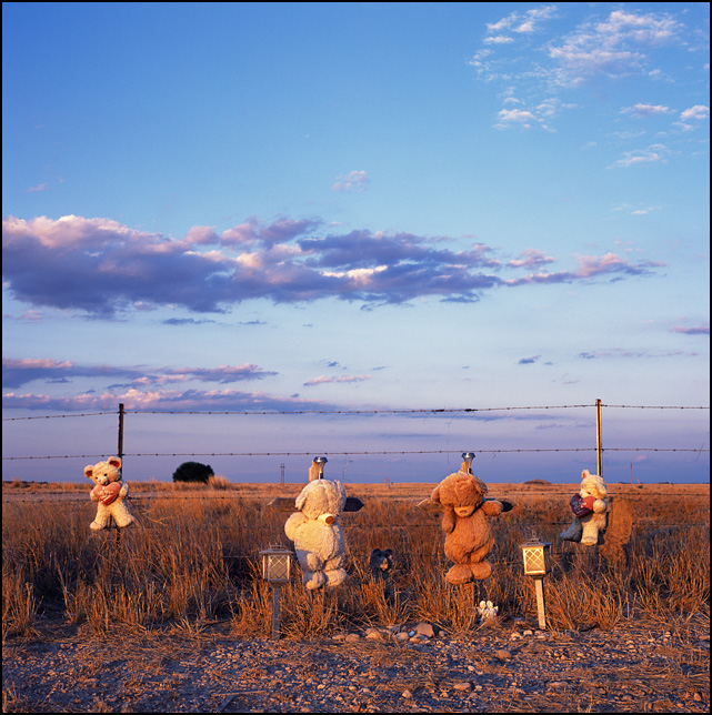 A roadside memorial with teddy bears and wooden crosses on US-285 near Artesia, New Mexico during a beautiful sunset.