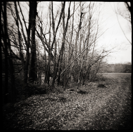 Trail through the woods along the Saint Joseph River on the IPFW campus in Fort Wayne, photographed with a Diana toy camera.