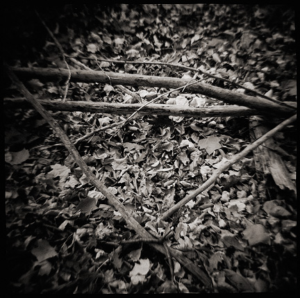 A triangle shape formed by fallen tree branches, surrounded by dead leaves on the forest floor, photographed with a Diana toy camera.