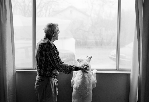 My grandfather and his dog look out the window together. Grandpa has his arm around the dog's shoulders. The dog is a big white German Shepherd mix.