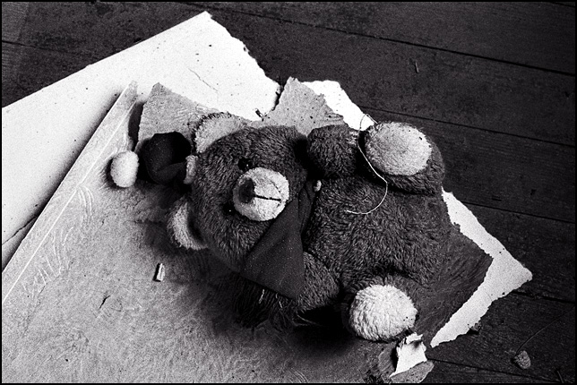 An old teddy bear wearing a Santa hat sits on the floor of an abandoned house surrounded by torn wallpaper and debris.