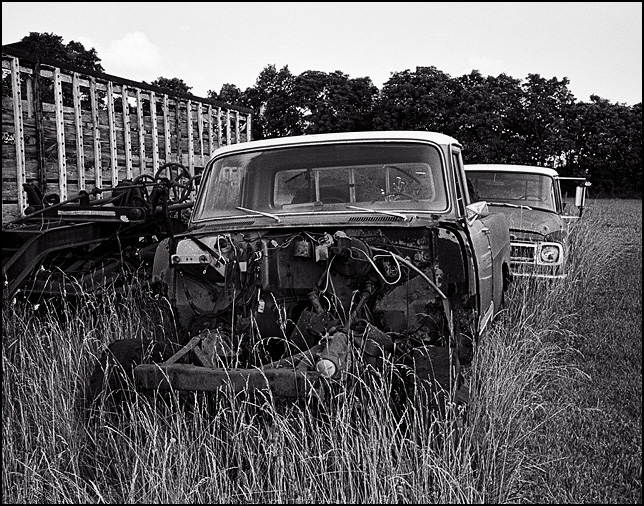 A pair of abandoned and partly disassembled International Harvester pickup trucks surrounded by rusty old farm equipment and tall grass in rural Noble County, Indiana.