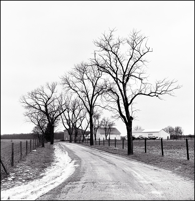 A long tree-lined driveway winds through snowy fields to a distant farmhouse and barn on Indianapolis Road in rural Allen County, Indiana.