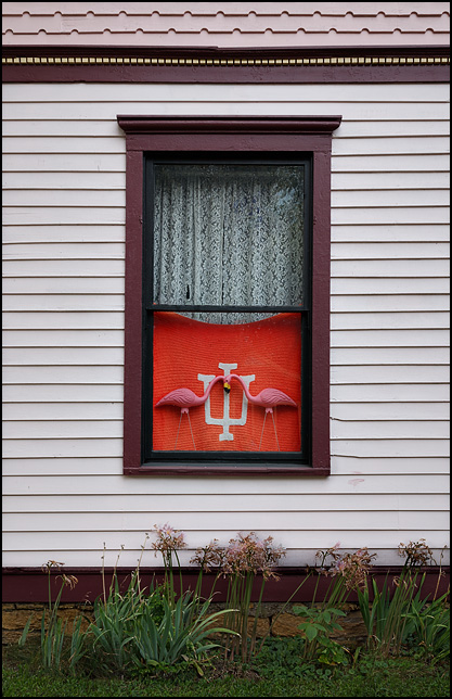 A pair of plastic pink flamingos and a hand-knitted blanket with the Indiana University logo hang in the front window of an old Victorian house in the historic West Central neighborhood in downtown Fort Wayne, Indiana.