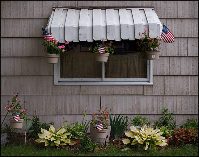 Several flower pots with geranium plants and American flags in them hang around the front window of an old house on Broadway in Fort Wayne, Indiana.