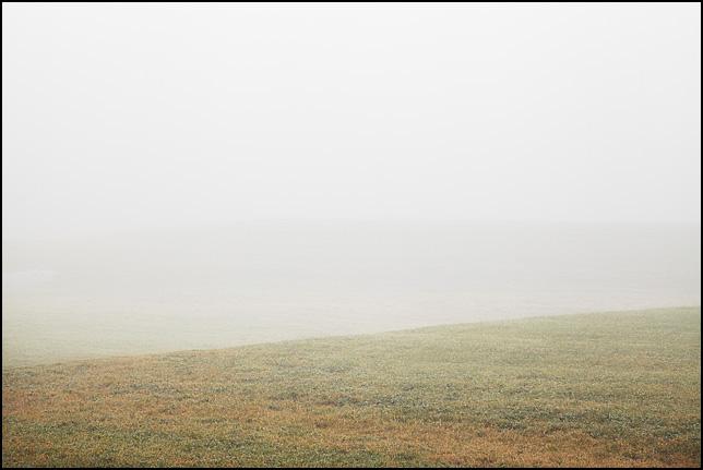 Dense fog over a rolling green landscape on a December morning in rural Allen County, Indiana.
