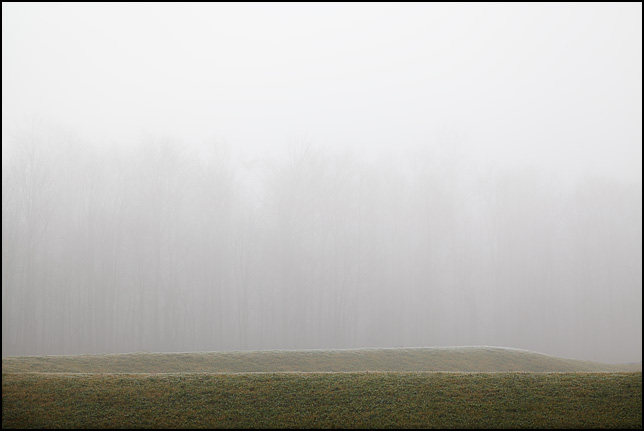 A forest veiled in fog behind a grassy embankment on a warm December morning in rural Allen County, Indiana.