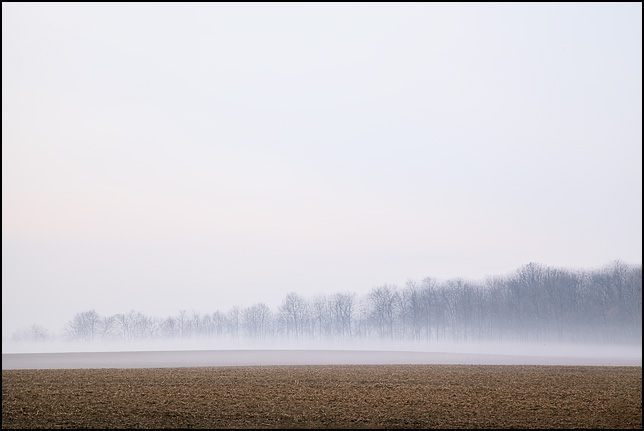 A layer of fog hovers over a field in rural Indiana, with the trees in a forest on other side of the farm visible through the haze.