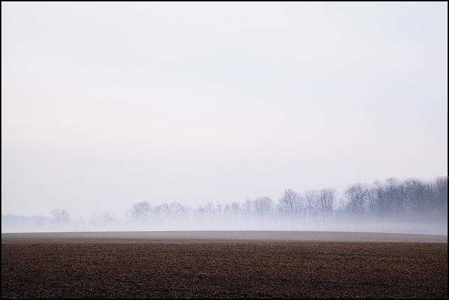 Fog at sunrise hides the trees on the edge of a field in rural Indiana.
