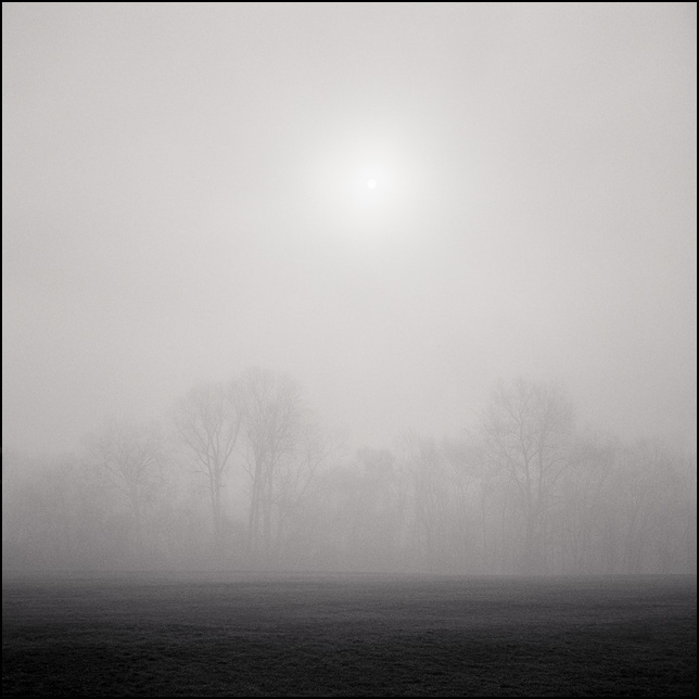 The sun rises over a line of trees on a foggy morning in Fort Wayne, Indiana.