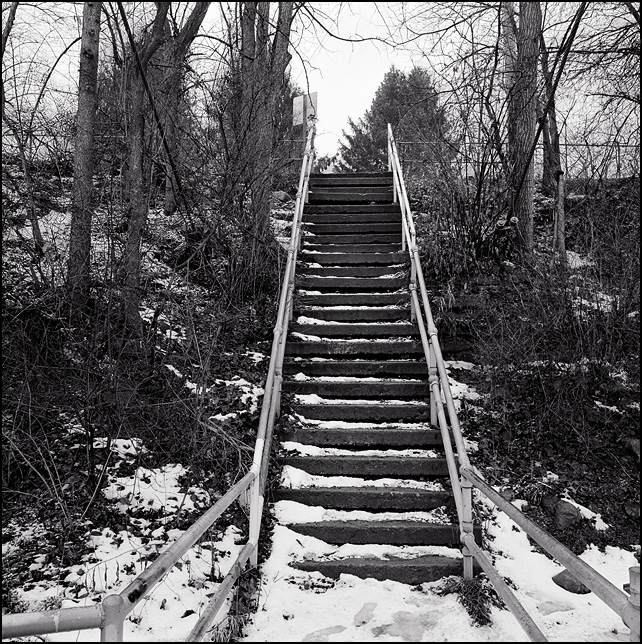 An old concrete stairway leading up a steep embankment on the Saint Marys River in Fort Wayne, Indiana.