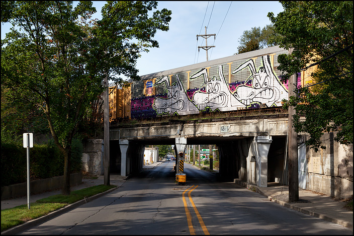Large graffiti drawings of three white dogs covering the entire side of an autorack railroad car sitting on an overpass over Taylor Street in Fort Wayne, Indiana.