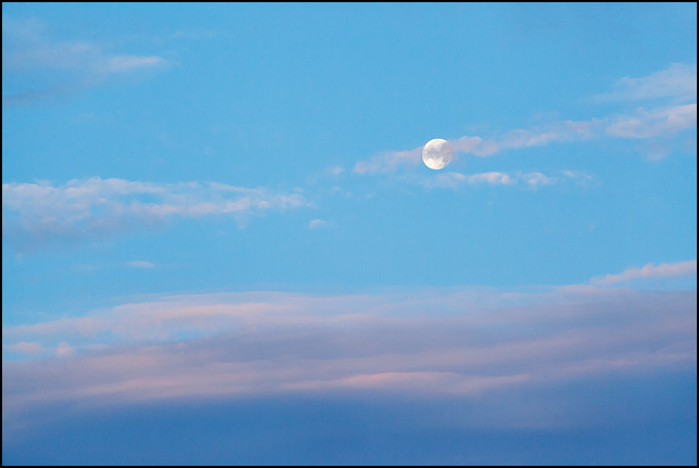 The moon in the early morning sky at dawn over Fort Wayne, Indiana.
