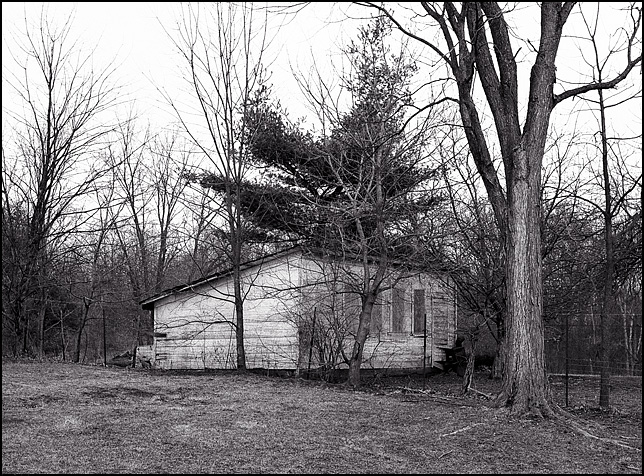 A small storage shed, originally built as a chicken coop, stands next to a tree in rural Allen County, Indiana.