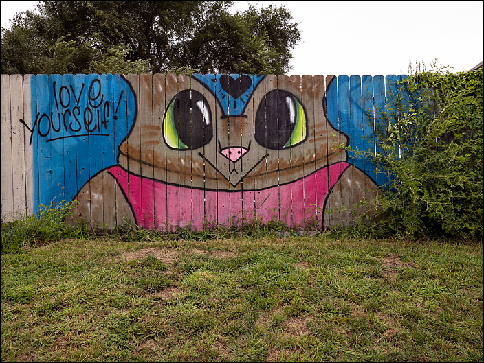 A mural of a cat that says Love Yourself painted on a wooden fence next to Little Shop of Lauras on Broadway in Fort Wayne, Indiana.