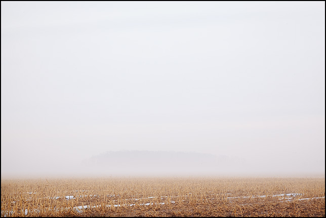 Trees hiding behind heavy fog on the far side of an empty field in Wells County, Indiana.