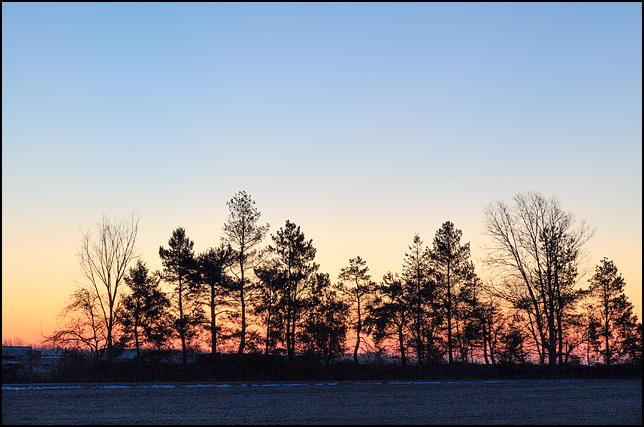 Sunrise behind a line of trees on the edge of a field in rural Elkhart County, Indiana. Photographed on New Years Day 2017. Christopher Crawford's first photograph of the year.