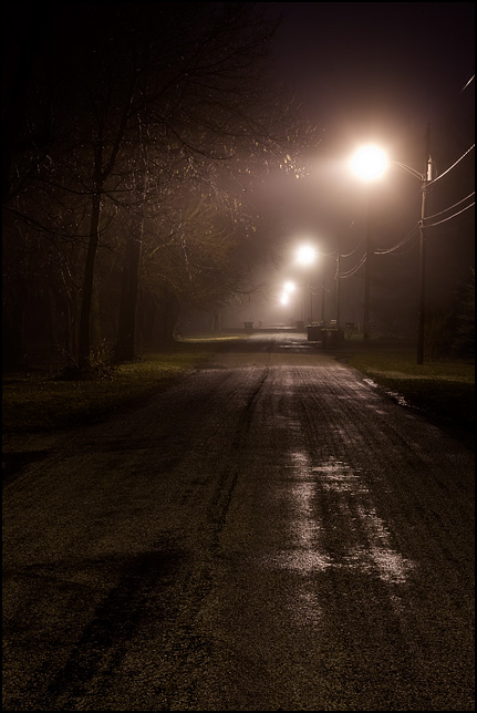 Lights reflect off the wet pavement of Arbor Avenue on a rainy winter night with fog in Fort Wayne, Indiana.