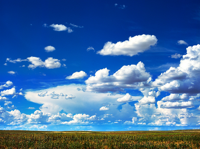 Fluffy clouds in the blue sky over a wheat field along Interstate 40 near Bard, New Mexico.