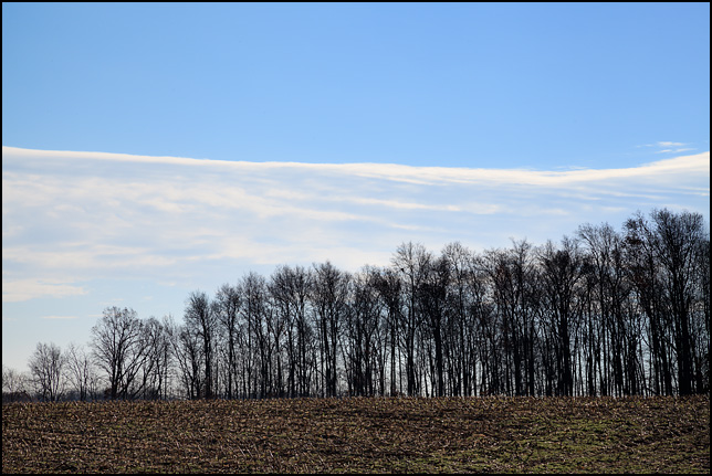 Feathery white clouds in a pale blue sky above a forest on the edge of a harvested cornfield on County Road 250W in rural Noble County, Indiana.