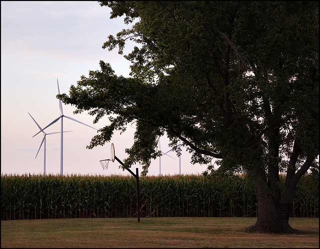 Wind turbines loom over a rural landscape with a basketball hoop under a big oak tree on the edge of a cornfield in Paulding County, Ohio.