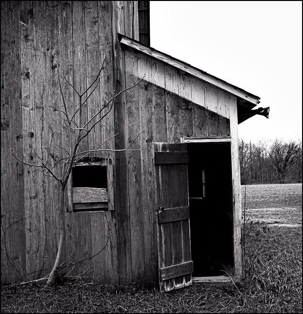 An open door on the side of an abandoned barn behind a small tree in rural Indiana.