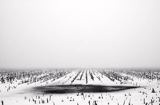 A snow covered cornfield on a foggy winter day with a frozen puddle of water in the cornstalks along Yohne Road in Allen County, Indiana near the National Serv-All Landfill.
