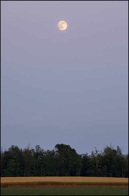 A full moon in the sky at dusk on the evening before the 2016 Summer Solstice. Photographed in the sky above a hayfield in rural Allen County, Indiana.
