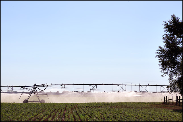 A center pivot irrigation system spraying water on a soybean field next to a fence and trees at a farm on US-33 in Elkhart County, Indiana.