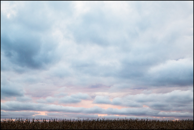 Purple sunset over a cornfield on State Road 19 between Wakarusa and Elkhart in rural Elkhart County, Indiana.