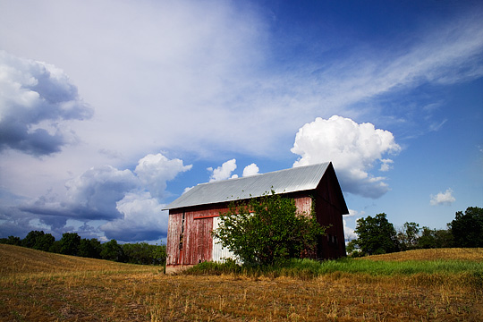 An abandoned barn in a field in Steuben County, Indiana