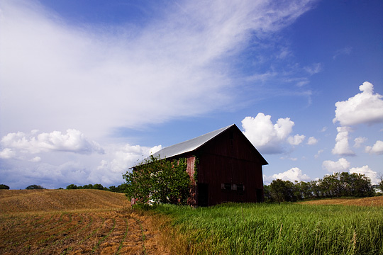 A deep blue sky with fluffy white clouds over an old red barn in the middle of a harvested cornfield on a farm in Steuben County, Indiana.