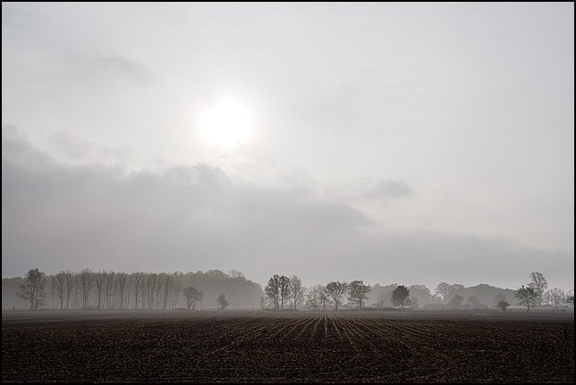 The sun rises over a freshly planted field in rural Allen County, Indiana.