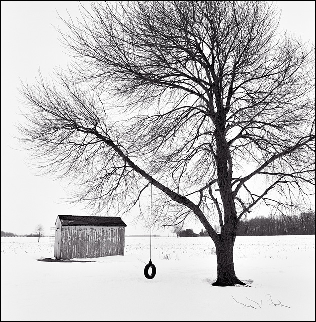A tire swing hangs from a tree in a snow-covered backyard in front of an old toolshed in rural Allen County, Indiana.