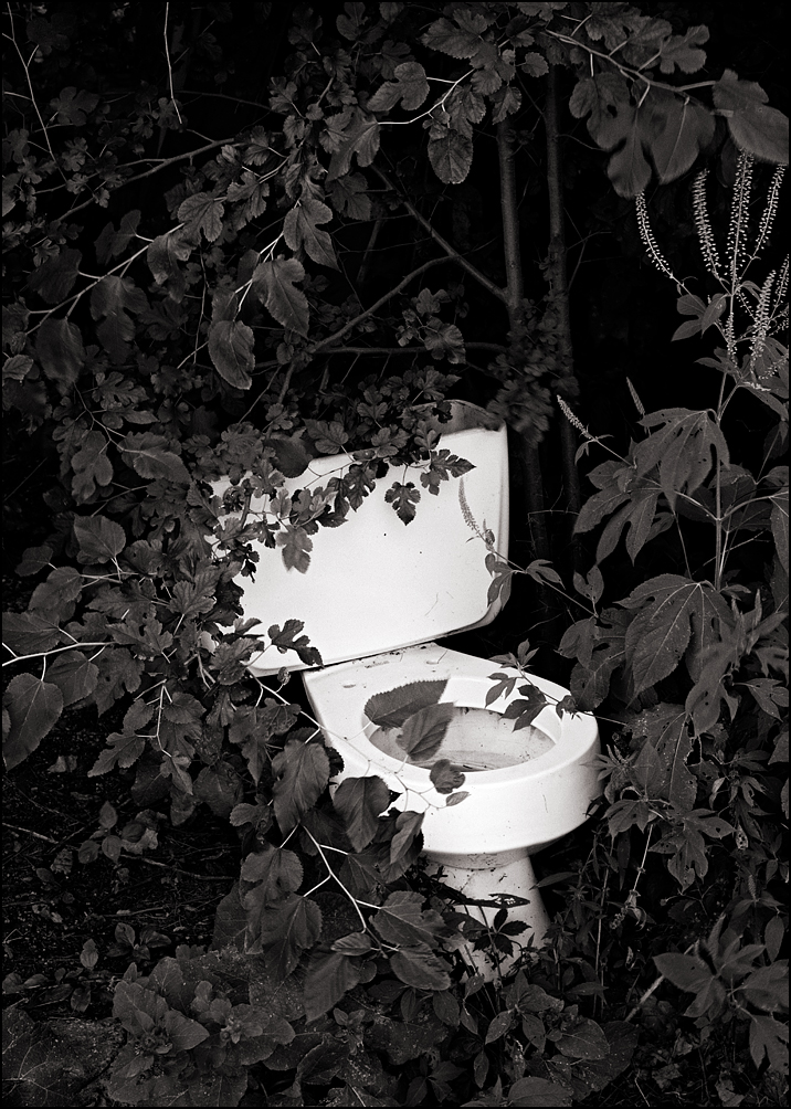An old toilet in a barn surrounded by tall weeds and trees in Allen County, Indiana.